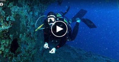 Han dykket på et nytt sted. Det han fant på havbunnen endret livet hans og han sa opp jobben kort tid etter!